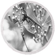 Great Wings  Black And White Dragonfly Round Beach Towel