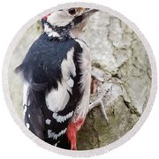 Greater Spotted Woodpecker Round Beach Towel