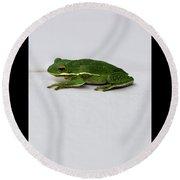 Gree Tree Frog 2016 With Black Border Round Beach Towel