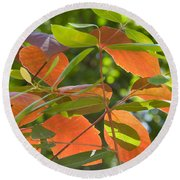 Green And Orange Leaves Round Beach Towel