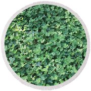 Green Clovers Round Beach Towel