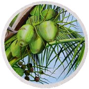 Green Coconuts-02 Round Beach Towel