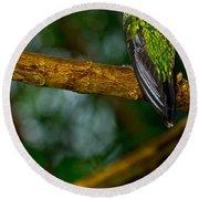 Green-crowned Brilliant Hummingbird Round Beach Towel