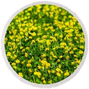 Green Field Of Yellow Flowers 2 1 Round Beach Towel