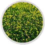 Green Field Of Yellow Flowers 3 Round Beach Towel