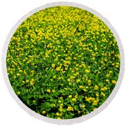 Green Field Of Yellow Flowers Round Beach Towel