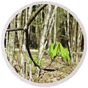 Green Foliage Forest Round Beach Towel