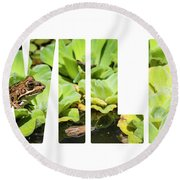 Green Frog In A Wetland Round Beach Towel
