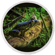 Green Frog On A Brown Log Round Beach Towel