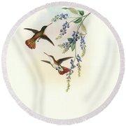 Green-fronted Hummingbird Amazilia Viridifrons Round Beach Towel by John and Elizabeth Gould