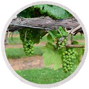 Green Grapes Round Beach Towel