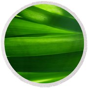 Green Grass Background In Backlight Round Beach Towel