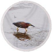 Green Heron Fishing Round Beach Towel