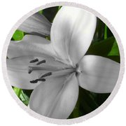 Green Highlighted Lily Round Beach Towel