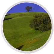Green Hill With Poppies Round Beach Towel