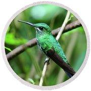 Green Crowned Brilliant Hummingbird Round Beach Towel