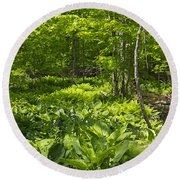 Green Landscape Of Summer Foliage Round Beach Towel