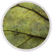 Green Leaf Round Beach Towel