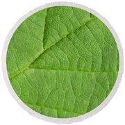 Green Leaf Texture Round Beach Towel