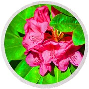 Green Leafs Of Pink Round Beach Towel
