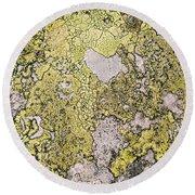 Green Moss On Rock Pattern Round Beach Towel