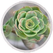 Green Petals Round Beach Towel
