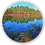 Green Swamp In December Round Beach Towel