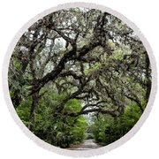 Green Swamp Oak Bower Round Beach Towel