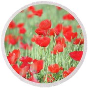 Green Wheat And Red Poppy Flowers Round Beach Towel