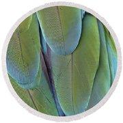 Green-winged Macaw #4 Round Beach Towel