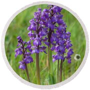 Green-winged Orchids Round Beach Towel