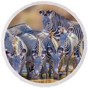Grevy Zebra Party  7528 Round Beach Towel