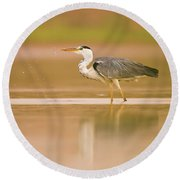 Grey Heron Ardea Cinerea Round Beach Towel