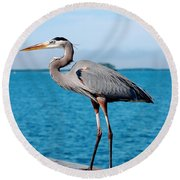 Grey Heron Round Beach Towel