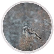 Grey In Snow Round Beach Towel