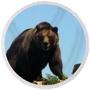 Grizzly-7746 Round Beach Towel