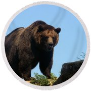 Grizzly-7747 Round Beach Towel