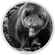 Grizzly Bear In Black And White Round Beach Towel