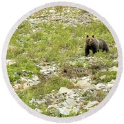 Grizzly Watching People Watching Grizzly No. 2 Round Beach Towel