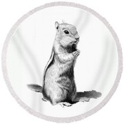 Ground Squirrel Round Beach Towel