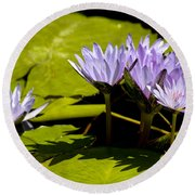 Group Of Lavender Lillies Round Beach Towel