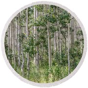 Grove Of Quaking Aspen Aka Quakies Round Beach Towel