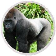 Grumpy Gorilla II Round Beach Towel