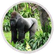 Grumpy Gorilla IIi Round Beach Towel