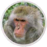 Grumpy Monkey Round Beach Towel