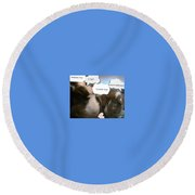 Guinea Pig Love And Bday Wishes Round Beach Towel