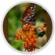Gulf Fritillary On Butterflyweed Round Beach Towel