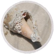 Gulf Of Mexico Shell Round Beach Towel