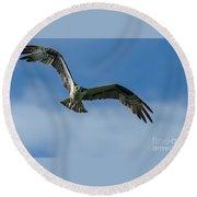 Gulf Osprey Round Beach Towel