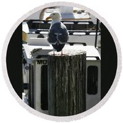 Gull And Pier 1 Round Beach Towel